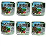 Pine Tree Farms 6 Pack Nutsie Suet Cake 10 oz. 7000 Made in USA