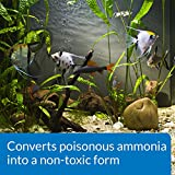 API AMMO-LOCK Freshwater and Saltwater Aquarium