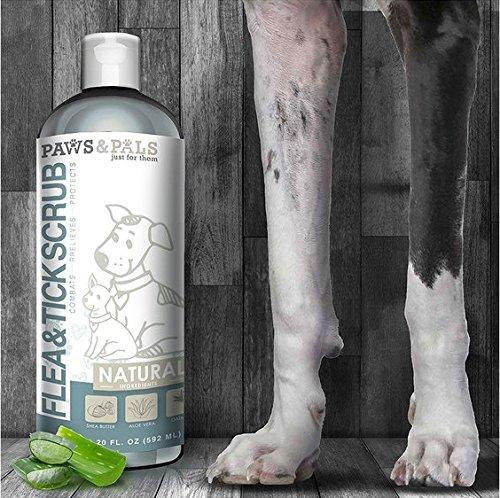 Paws & Pals Flea and Tick Shampoo-Conditioner Scrub for Dogs & Cats Moisurizes, Deodorizes, Detangles Fur Coat (Flea & Tick), 20 FL oz