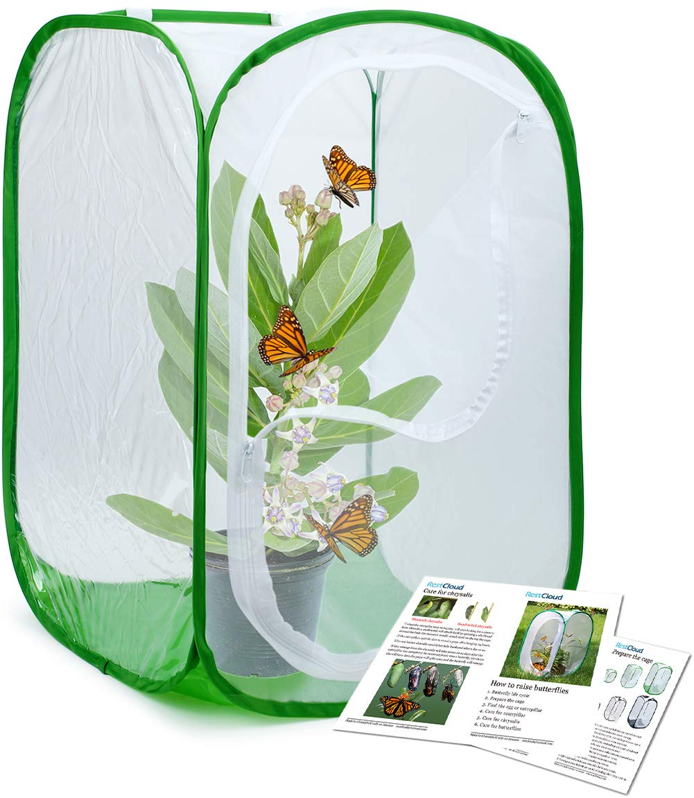 Restcloud Insect and Butterfly Habitat Cage Terrarium Pop-up 24 Inches Tall (Bottom Green)
