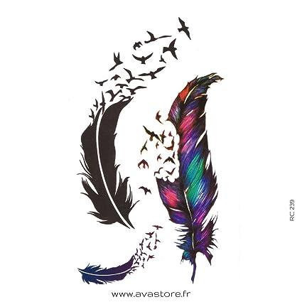 Tatuajes temporales PLUMA - Tatuaje efímero pluma: Amazon.es: Belleza