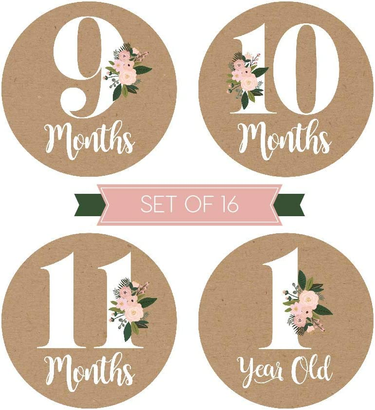 16 Rustic Floral Baby Girl Milestone Stickers 12 Monthly Photo Picture Props for Infant Onesie Best Shower Basket Present 1st Year Belly Decals Scrapbook Memory Registry Gift Flower Birth Months