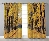 Thermal Insulated Blackout Grommet Window Curtains,Nature Decor,Autumn Fall Trees Falls Dried Leaves Scenery on Road Path Photo Artwork,Yellow and Green,2 Panel Set Window Drapes,for Living Room Bedro Review
