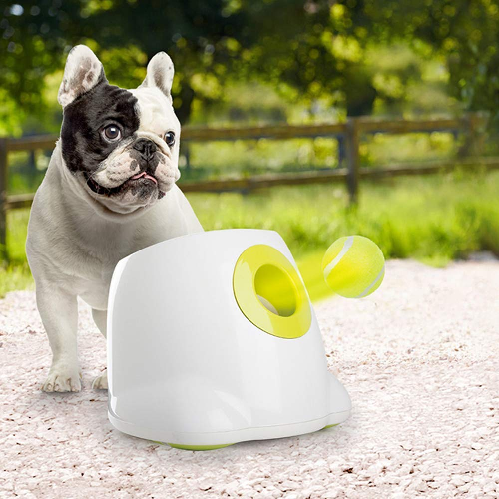 All for Paws Interactive Automatic Ball Launcher Dog Toy, Tennis Ball Throwing Machine for Dog Training, 3 Balls Included by AFP