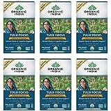 Organic India Tulsi Focus Hibiscus Cinnamon Tea - Stress Relieving, Mental Clarity, Nootropic, Vegan, Gluten-Free, USDA Certi