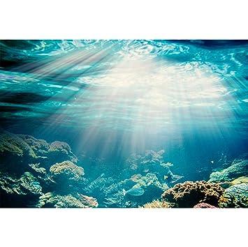 YongFoto 1,5x1m Vinilo Fondo de fotografía Acuario Fondo de luz Solar bajo el Agua Los Peces Corales Telón de Fondo Fotografía cumpleaños Estudio de Foto ...