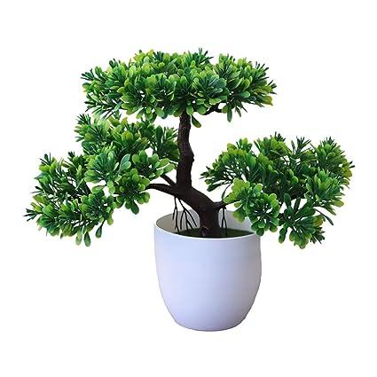 Gespout Plante En Pot Plante Artificielle Ganoderma Lucidum