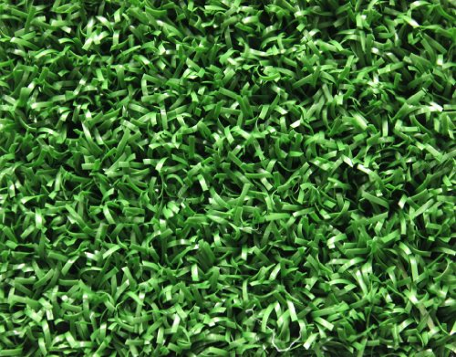 Koeckritz Rugs 12'x16' Park Central Infield Outdoor Artifical Grass Turf Many Sizes - Infield Grass
