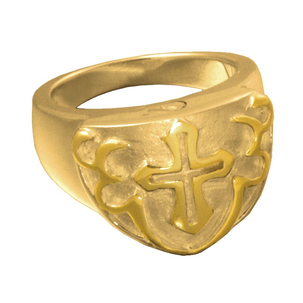 Memorial Gallery 2010GP-14 Men's Cross Ring 14K Gold/Sterling Silver Plating Cremation Pet Jewelry, Size 14