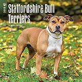 Staffordshire Bull Terriers Wall Calendar 2018 {jg} Best Holiday Gift Ideas - Great for mom, dad, sister, brother, grandparents, grandchildren, grandma, gay, lgbtq.