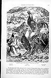 Old Original Antique Victorian Print Domestic Poultry Bankiva Fowl Cochins Dorkings Bantams C1890 427K131