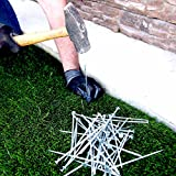 One Stop Outdoor USA MADE Synthetic Grass Landscape, 5.5'' Stakes, 5 lbs Galvanized Boxed Spikes for Securing Artificial Turf Products (AN AVERAGE OF 25% MORE NAILS!) Approximately 150 Nails Per Bag