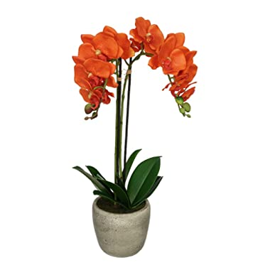 House of Silk Flowers Artificial Double-Stem Orchid in Grey Stone-Look Vase (Orange)
