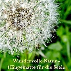 Wundervolle Natur - Hängematte für die Seele