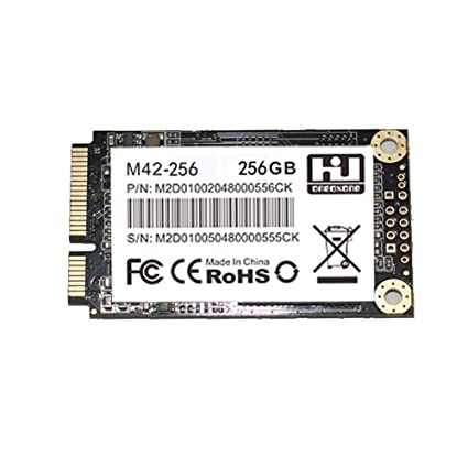 M42-256 Msata SSD disco duro de estado sólido de 256 GB, disco ...