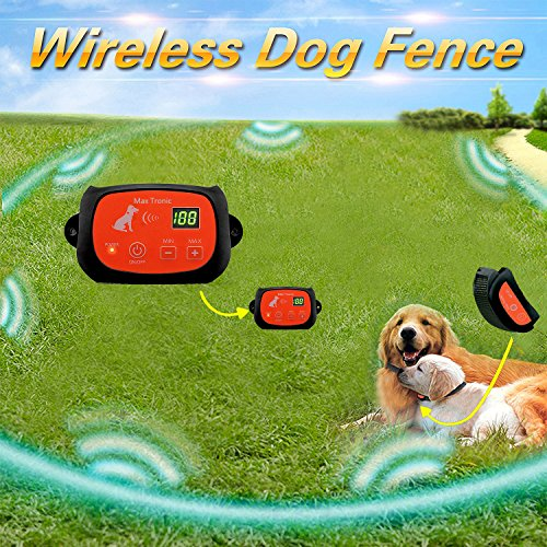 Dog System (Portable Wireless 2 Dog Fence, NO WIRES TO BURY-800FT Containment System, The 4nd Generation, DT-WLJK4)