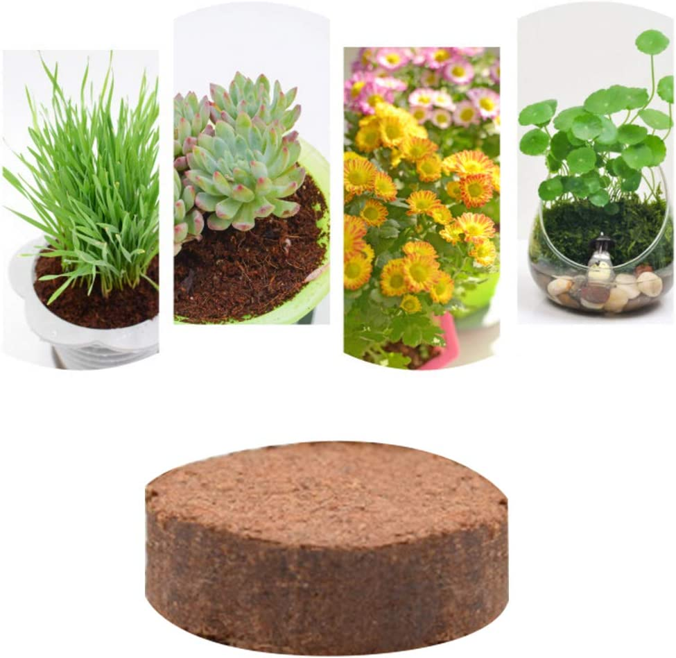Natural Coconut Fibres Substrate for Terrarium Round Coconut Brick Mya 5 Pcs Natural Coconut Shell Coconut Brick for Reptile Pad