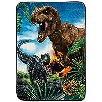 "Franco Jurassic World Dinosaur Exploration 46""x60"" Dinosaur Throw Blanket"