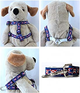 "product image for Diva-Dog 'Stars & Paws' Custom 5/8"" Wide Dog Step-in Harness with Plain or Engraved Buckle, Matching Leash Available - Teacup, XS/S"