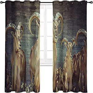 HouseLookHome Curtain Panels Antlers Decor Light Reducing Curtains Capricorn Group of Spanish Ibex Under Shade Sunbeams Animal Nature Picture Print 2 Grommet Top Curtain Panels,42