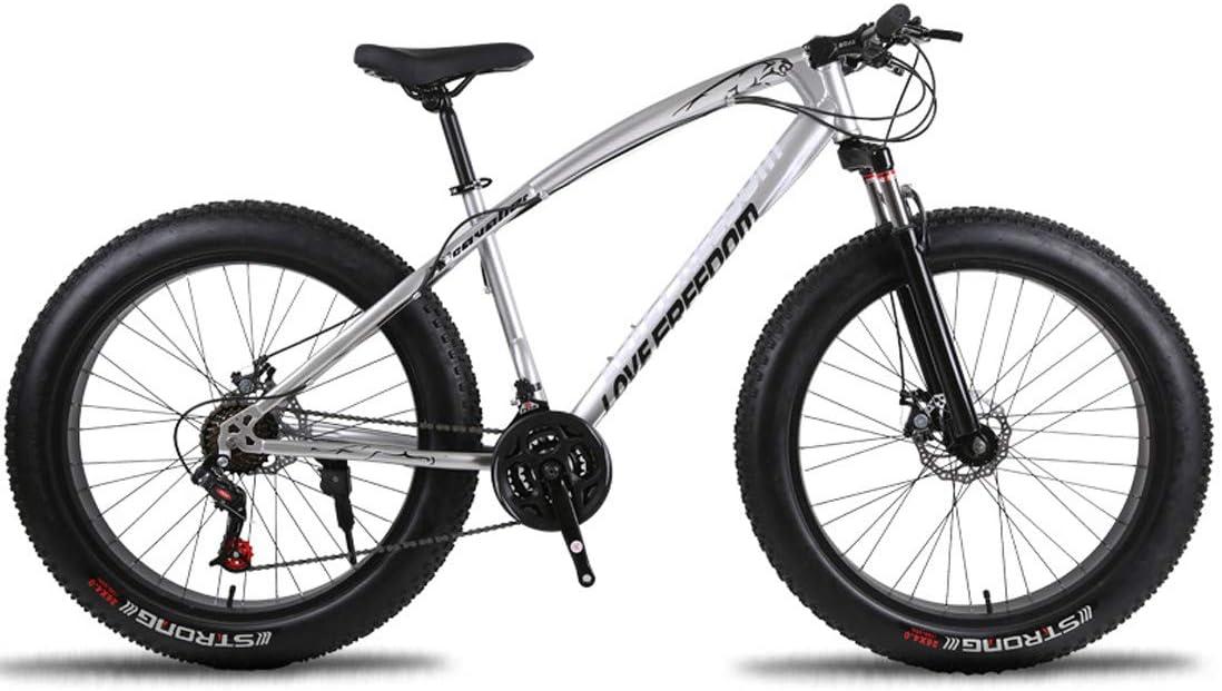MICAKO Bicicleta De Trekking, Cambio De Cadena, 21/24/27 Marchas, 26 Pulgada,Plata,27speed: Amazon.es: Deportes y aire libre
