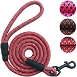 "PetsCare Dog Leash Pet Training Leashes - 2/5 Inch Thick 5 Feet Long - Quality Thick Nylon - Soft Handle and Light Weight Pet Lead - for Small Medium Large Dogs (2/5"" X 5', Red)"