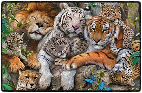 "Brumlow Mills EW10319-30×46 A Cat Nap Wildlife Rug, 2'6″ x 3'10"" For Sale"