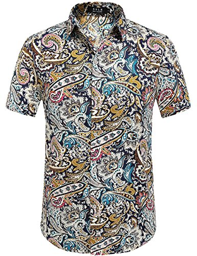 SSLR Men's Cotton Button Down Short Sleeve Hawaiian Shirt (Large, Blue Red (AFD-169))