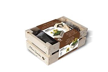 Kit de Cultivo Caja de madera - MiniGarden Girasol
