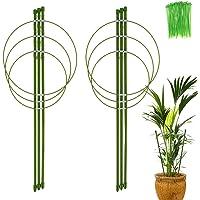 Tutor para plantas, 2 unidades de soporte de plantas de jardín de metal con 100 enganches, anillos de soporte de plantas…