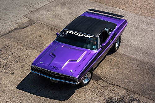 Poster of Dodge Challenger Left Front Plumb Crazy HD 36 X 24 Inch Print