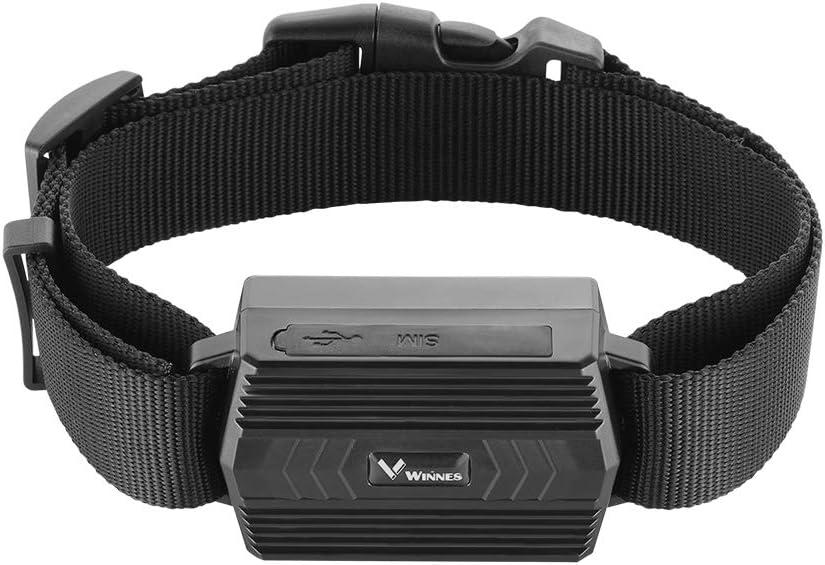 Winnes - Rastreador GPS con collar, herramientas de seguimiento en tiempo real para ganado ovejas grandes animales GPS precisión 5 m, 3000 mAh batería recargable, no magnético localizador GPS