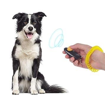 ... Clicker Perro de Entrenamiento Clicker Big Button Animales Herramienta de Entrenamiento para Perros, Gatos, Caballos 1 pcs: Amazon.es: Hogar