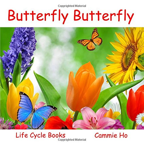 Butterfly Butterfly (Life Cycle Books)