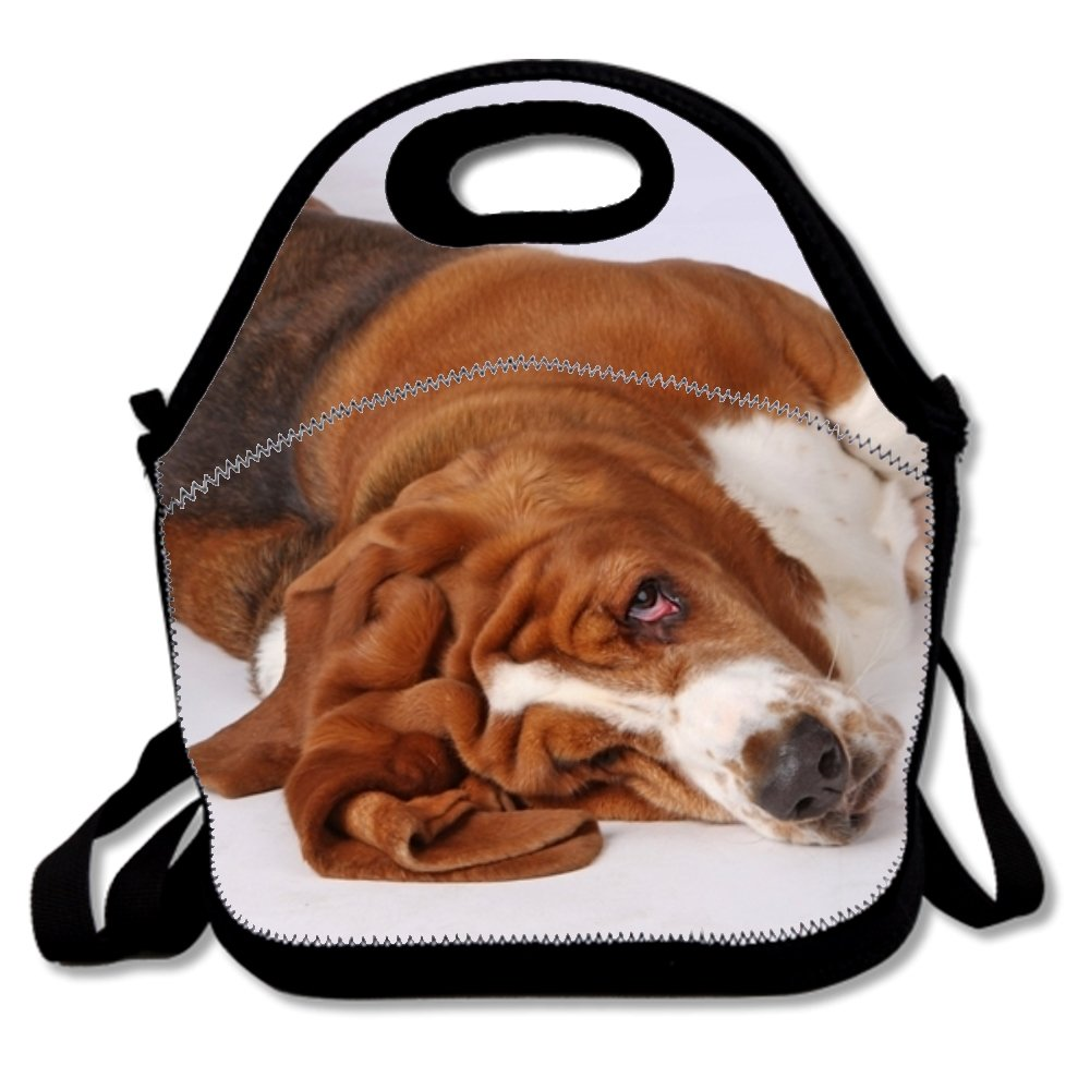 72d02976824e8 Amazon.com: Basset Hound Polyester Lunch Tote Durable Lunch Box For ...
