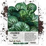Seed Needs, Tatsoi Mustard (Brassica narinosa) 300 Seeds Non-GMO