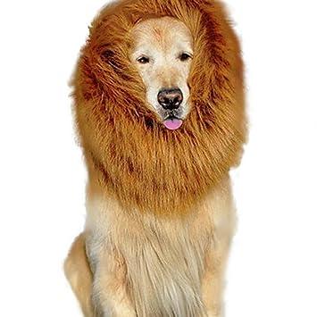 Disfraz de león de perro grande de Haresle con peluca para festival