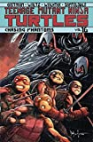 TEENAGE MUTANT NINJA TURTLES ONGOING TP VOL 16 CHASING PHANTOMS