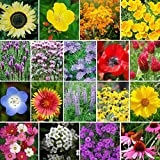 The Bees Knees - Pollinator Wildflower Seed Mix - 5 Pounds, Bulk, Mixed