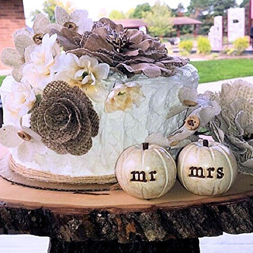 Wedding cake topper//set of 2 rustic white mr mrs pumpkins and Love banner
