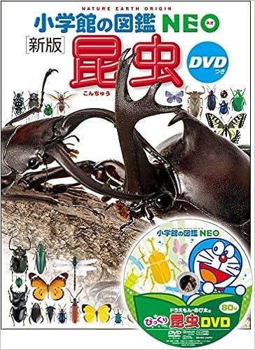 新版 昆虫(小学館の図鑑 NEO)