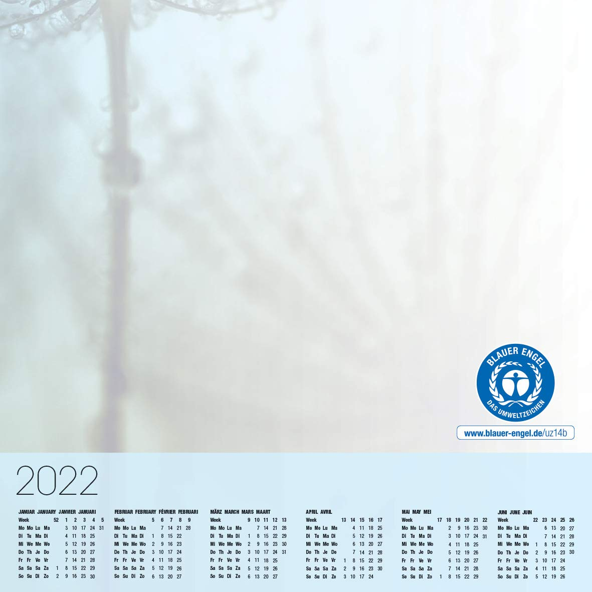 59,5 x 41 cm 30 hojas A2 bloc de notas SIGEL HO450 Vade azul y blanco dise/ño dientes de l/éon y gotas de roc/ío calendarios trianuales