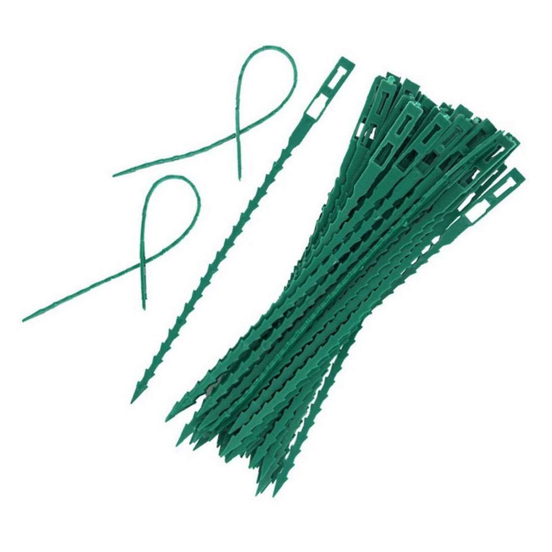 XKJFZ 50pcs Ajustable De Torsi/ón Planta De Jard/ín De Pl/ástico Flexible De Las Ataduras De Cables Tira De Alambre para Planta De Jard/ín Sujetador Asegurar Verde