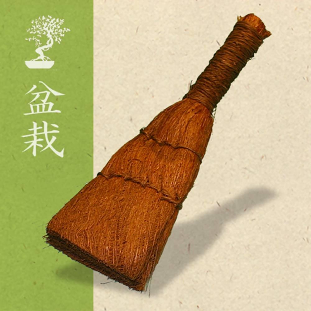 Bonsai Broom Gardens4you