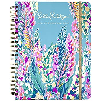 Amazon.com : Summit 2018 Lily & Val Appointment Book, 17 ...