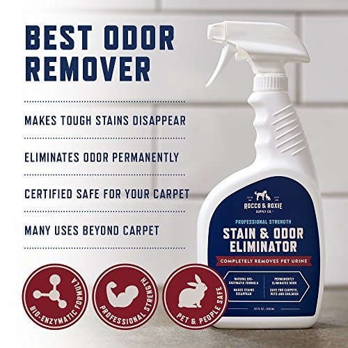Professional Strength Stain Amp Odor Eliminator Enzyme