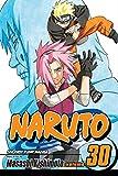 Naruto, Vol. 30: Puppet Masters