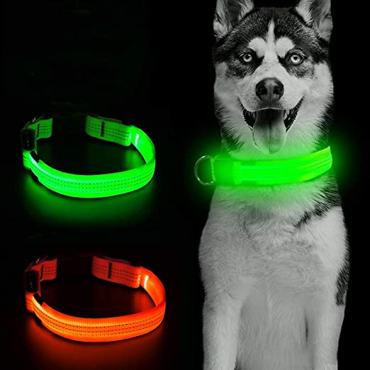 Clan_X LED Dog Collar USB Rechargeable - Glow in The Dark Dog Collars Light Up Doggie Collars Bright Dog Lights for Night Walking Keep Your Pets Visible & Safe, S/M/L