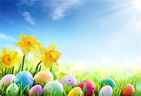 Csfoto 8x6ft Background Easter Eggs On Spring Meadow Photography Backdrop Yellow Flower Blue Sky Painted Egg April Festival Sunny Nature New Life