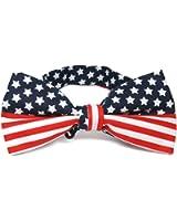 TieMart American Flag Bow Tie